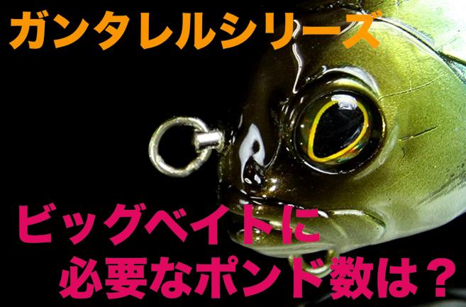 【ガンタレルシリーズ】ビッグベイトのラインは何ポンドを使えばいい?