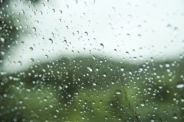雨の日に釣りを諦める勇気!家に帰ってゆっくりして次に備えるのが賢者である!